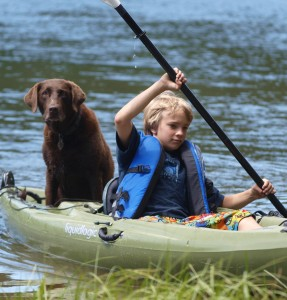 children and animals a beneficial relationship