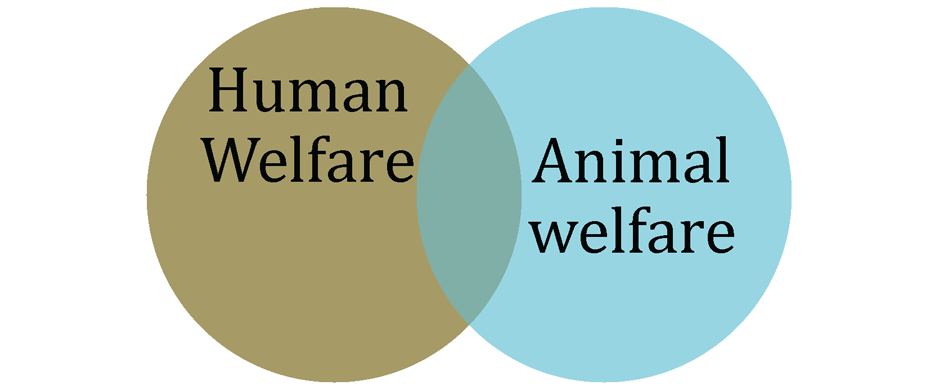 Human-Animal-Welfare4-FPSlider